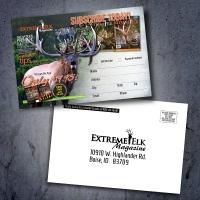 extreme-elk-magazine-insert-display